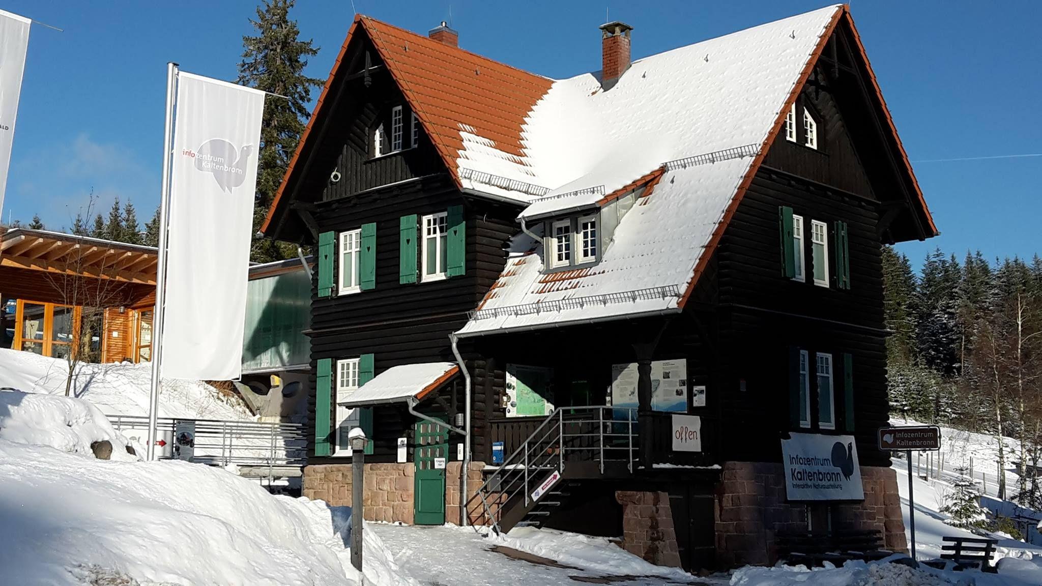 IZ_Gebäude_Winter